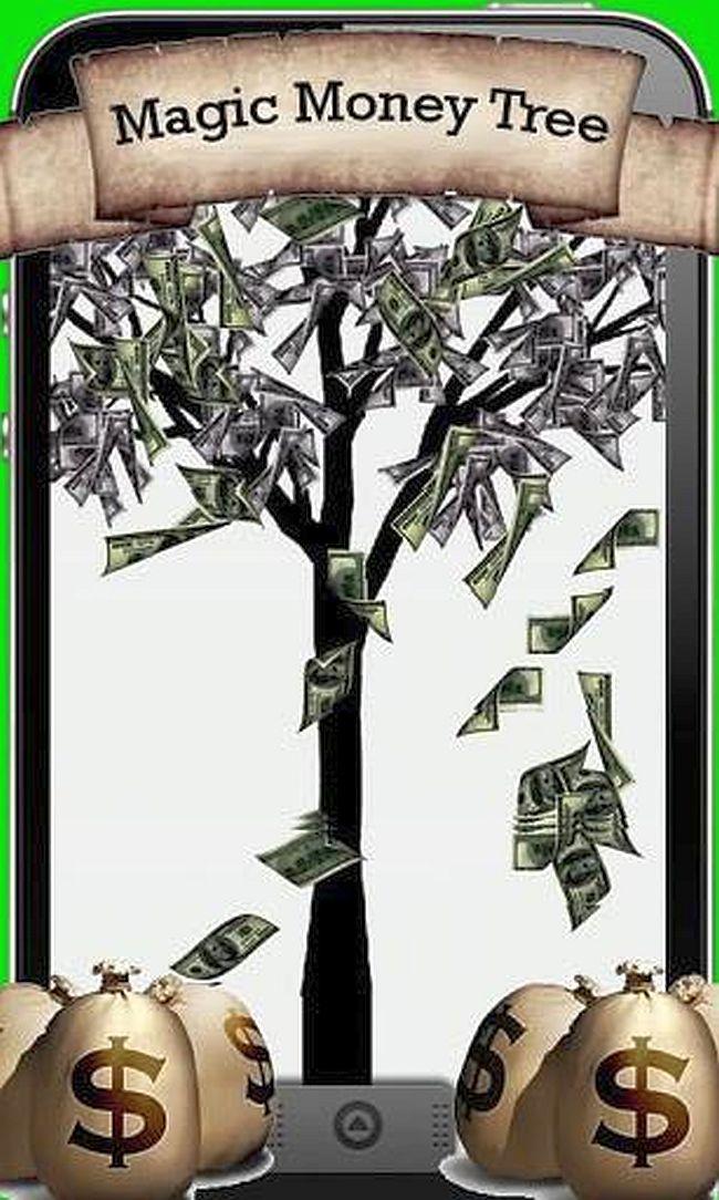 Magic Money Tree 650