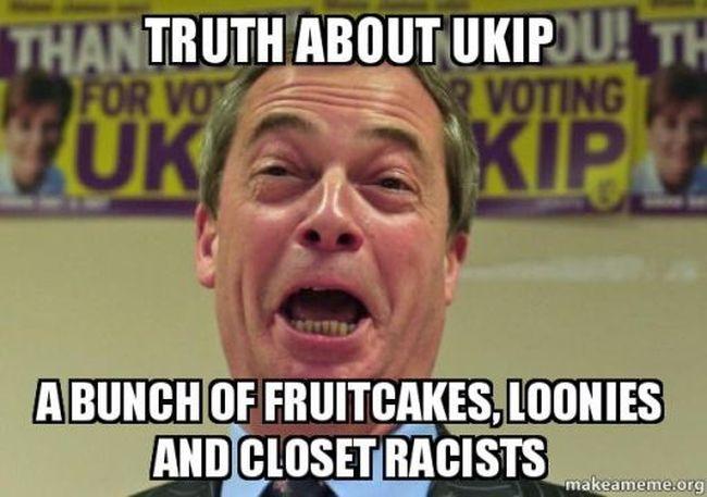UKIP fruitcakes 650