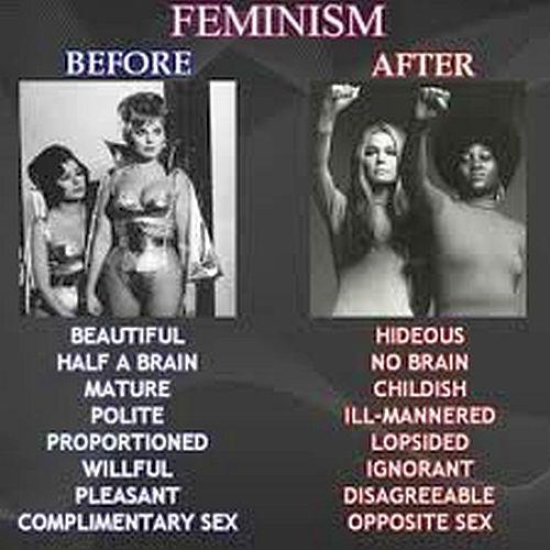 Feminism And Sex 52