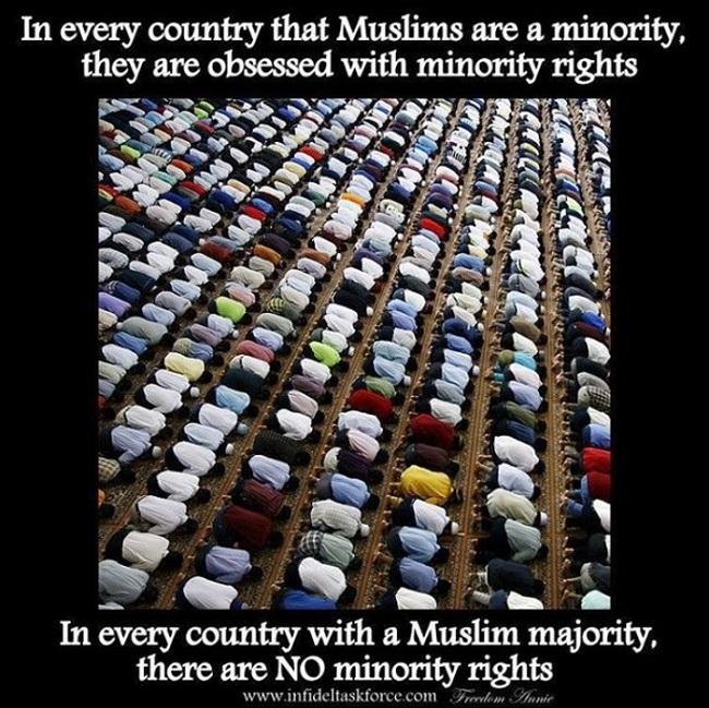 Islam minority rights 650