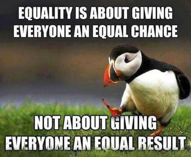 Equality 650