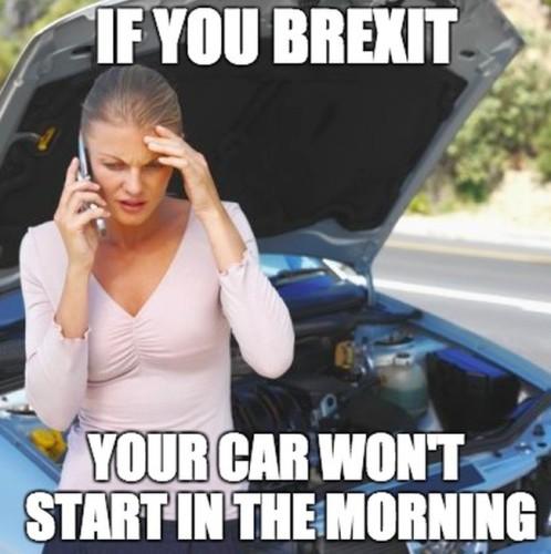 Brexit. The memes