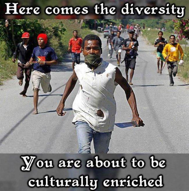 Islam diversity