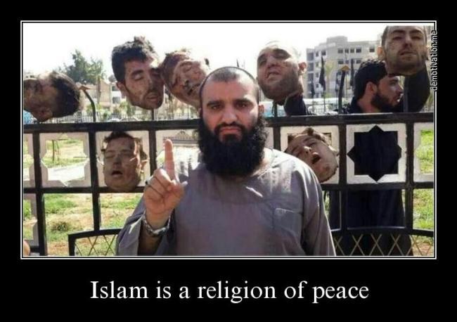 Islam religion of peace #3 650