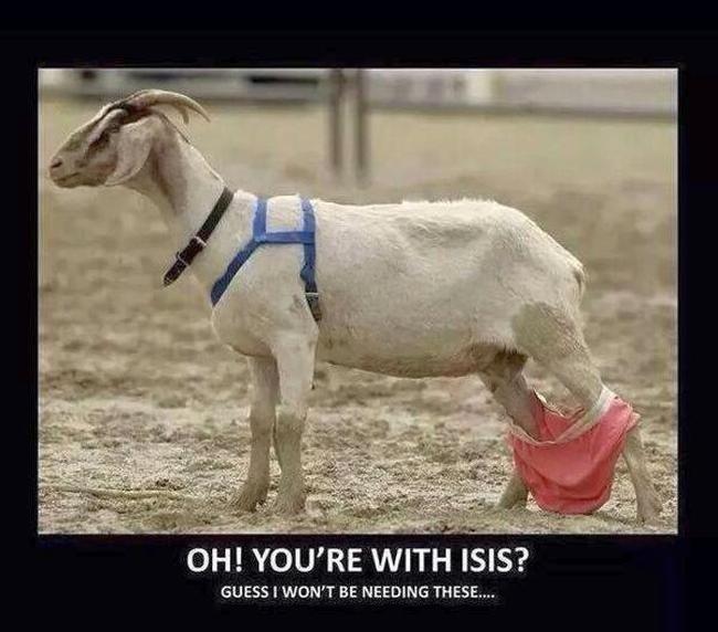 ISIS goat #2 650